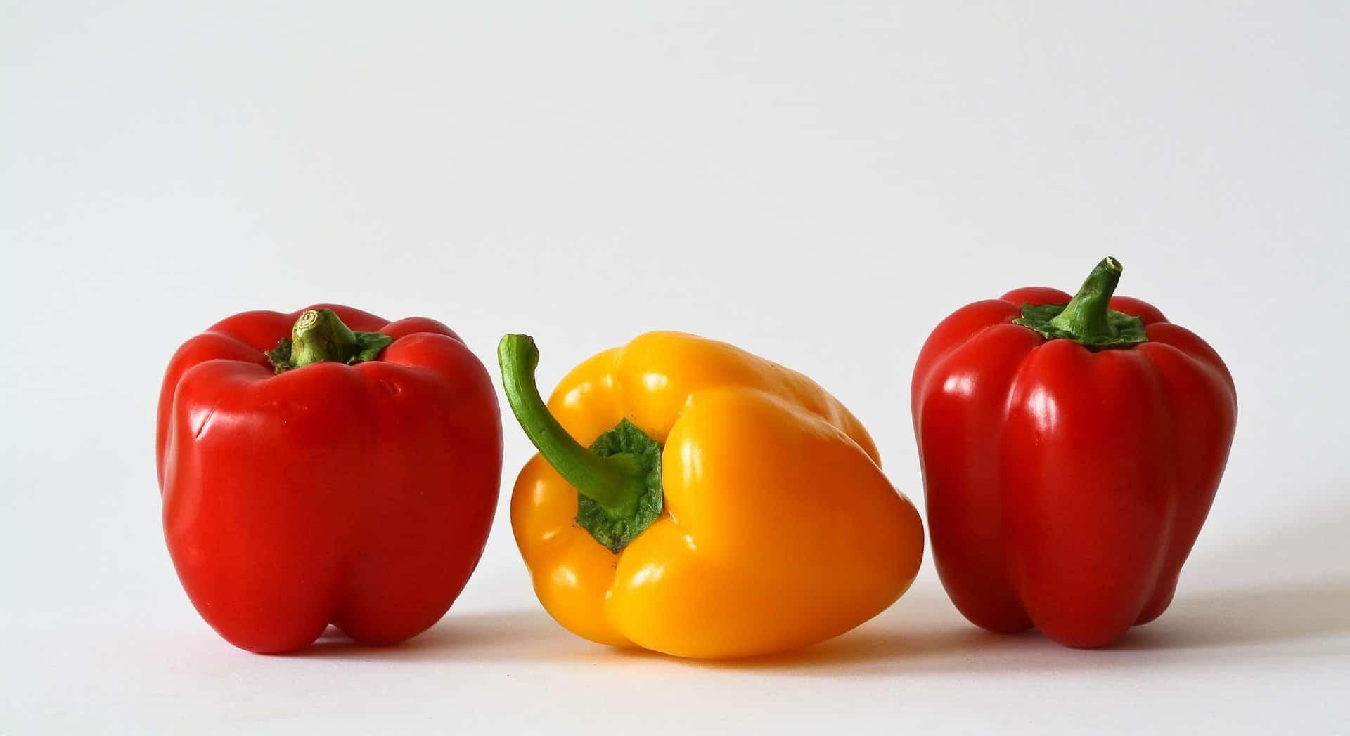 Paprika-Hähnchen Rezept für Küchenmaschine